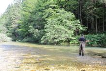 Guide fishing in Slovenia 3