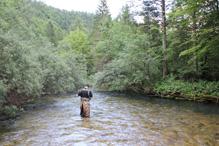 Guide fishing in Slovenia 5
