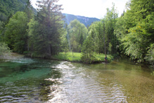 Guide fishing in Slovenia 6