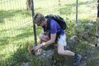 En höna som skrämts av vår hund räddas.